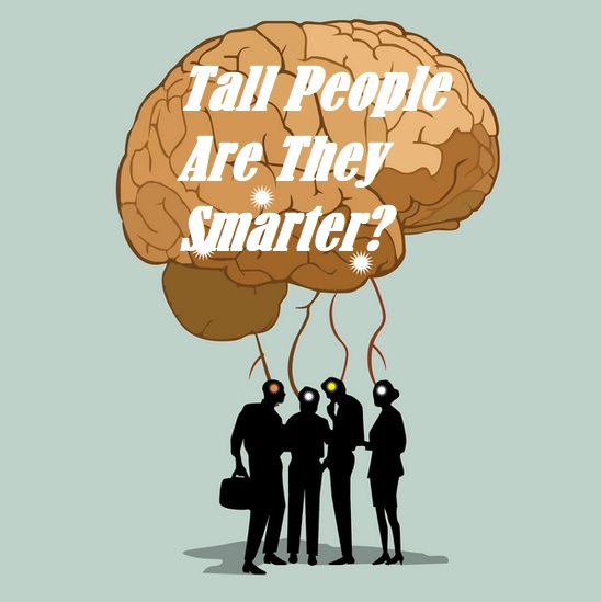Are Tall People Smarter Than Shorter People